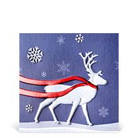 Bild Weihnachtskarten, 10 Stück