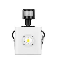 Bild LED Fluter mit Licht-Sensor, 30W