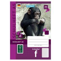 Bild Schulheft, Lineatur F, DIN A5, 16 Blatt