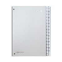 Bild Pultordner Color-Einband - Tabe 1 - 31, 32 Fächer, silber