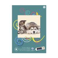 Bild Tonpapierblock geleimt - A3, 10 Blatt, 130g/qm, sortiert