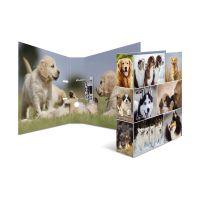 Bild 7165 Motivordner Hund - A4, 70 mm