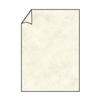 Bild Coloretti Briefbogen - A4, 80g, 10 Blatt, sandgelb